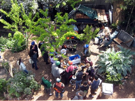 people gather to share free, dumpstered food - food not bombs