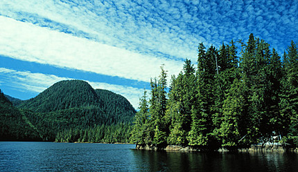 Drancy Inlet approaching Lockhart/Gordon, Great Bear Rainforest, BC, Canada