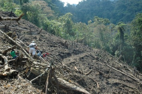 The open wounds of the Amazon. Credit:Rolly Valdivia/IPS