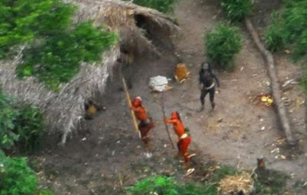 Uncontacted Indians 'Abandoned to Their Fate' as Loggers and Drug Smugglers Invade